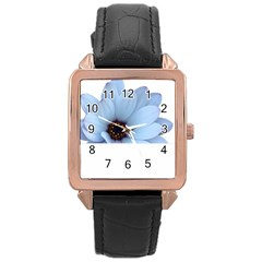 Daisy Flower Floral Plant Summer Rose Gold Leather Watch  by Nexatart