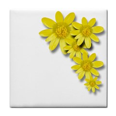 Flowers Spring Yellow Spring Onion Tile Coasters by Nexatart