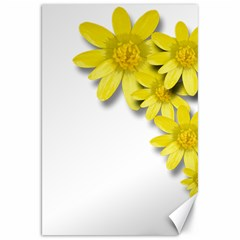 Flowers Spring Yellow Spring Onion Canvas 20  X 30   by Nexatart