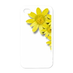 Flowers Spring Yellow Spring Onion Apple Iphone 4 Case (white) by Nexatart