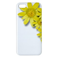Flowers Spring Yellow Spring Onion Iphone 5s/ Se Premium Hardshell Case by Nexatart