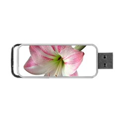 Flower Blossom Bloom Amaryllis Portable Usb Flash (two Sides) by Nexatart