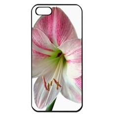 Flower Blossom Bloom Amaryllis Apple Iphone 5 Seamless Case (black) by Nexatart