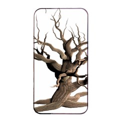 Tree Isolated Dead Plant Weathered Apple Iphone 4/4s Seamless Case (black) by Nexatart