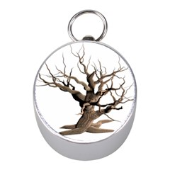 Tree Isolated Dead Plant Weathered Mini Silver Compasses by Nexatart