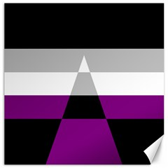 Dissexual Flag Canvas 16  x 16   by Mariart