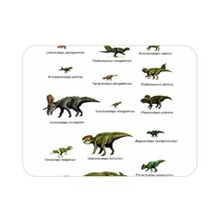 Dinosaurs Names Double Sided Flano Blanket (mini)  by Valentinaart