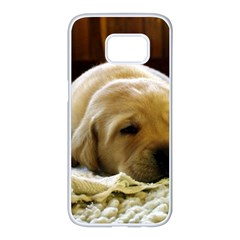 2 Puppy Yl Samsung Galaxy S7 edge White Seamless Case by TailWags