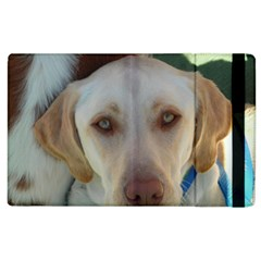 2 Yellow Lab Apple iPad 3/4 Flip Case by TailWags