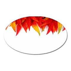 Abstract Autumn Background Bright Oval Magnet by Nexatart