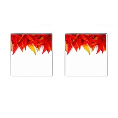 Abstract Autumn Background Bright Cufflinks (square) by Nexatart