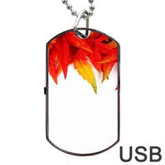 Abstract Autumn Background Bright Dog Tag Usb Flash (two Sides) by Nexatart