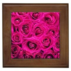 Pink Roses Roses Background Framed Tiles by Nexatart