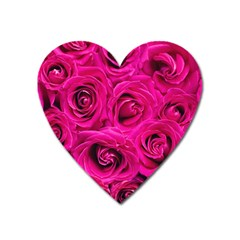 Pink Roses Roses Background Heart Magnet by Nexatart