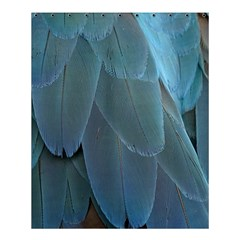 Feather Plumage Blue Parrot Shower Curtain 60  X 72  (medium)  by Nexatart