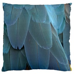 Feather Plumage Blue Parrot Large Cushion Case (one Side) by Nexatart