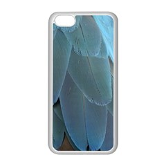 Feather Plumage Blue Parrot Apple Iphone 5c Seamless Case (white) by Nexatart