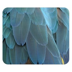 Feather Plumage Blue Parrot Double Sided Flano Blanket (small)  by Nexatart