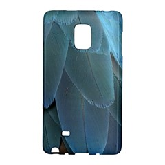Feather Plumage Blue Parrot Galaxy Note Edge by Nexatart