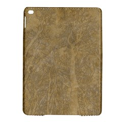 Abstract Forest Trees Age Aging Ipad Air 2 Hardshell Cases by Nexatart