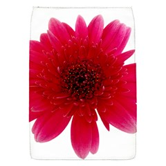 Flower Isolated Transparent Blossom Flap Covers (s)  by Nexatart