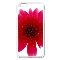 Flower Isolated Transparent Blossom Apple Iphone 6 Plus/6s Plus Enamel White Case by Nexatart