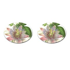 Passion Flower Flower Plant Blossom Cufflinks (oval) by Nexatart