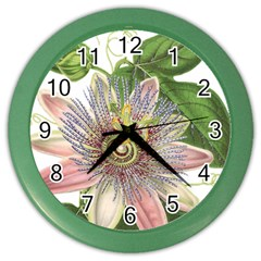 Passion Flower Flower Plant Blossom Color Wall Clocks by Nexatart