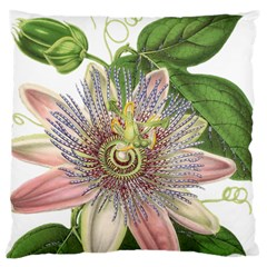 Passion Flower Flower Plant Blossom Large Cushion Case (two Sides) by Nexatart