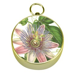 Passion Flower Flower Plant Blossom Gold Compasses by Nexatart