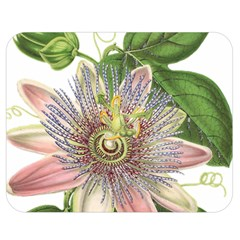 Passion Flower Flower Plant Blossom Double Sided Flano Blanket (medium)  by Nexatart