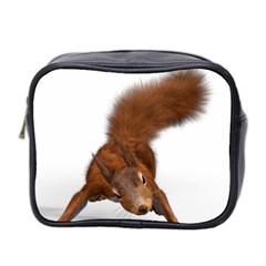 Squirrel Wild Animal Animal World Mini Toiletries Bag 2 Side by Nexatart