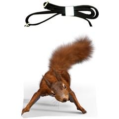 Squirrel Wild Animal Animal World Shoulder Sling Bags by Nexatart
