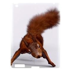 Squirrel Wild Animal Animal World Apple Ipad 3/4 Hardshell Case by Nexatart