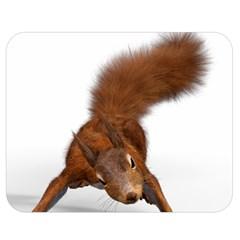 Squirrel Wild Animal Animal World Double Sided Flano Blanket (medium)  by Nexatart