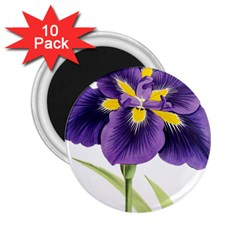 Lily Flower Plant Blossom Bloom 2 25  Magnets (10 Pack)  by Nexatart