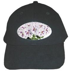 Flower Plant Blossom Bloom Vintage Black Cap by Nexatart