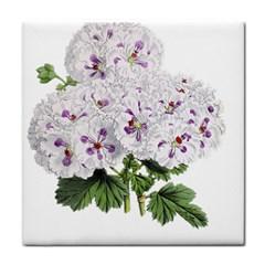 Flower Plant Blossom Bloom Vintage Tile Coasters by Nexatart