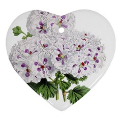 Flower Plant Blossom Bloom Vintage Ornament (heart) by Nexatart