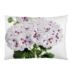 Flower Plant Blossom Bloom Vintage Pillow Case by Nexatart