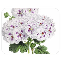 Flower Plant Blossom Bloom Vintage Double Sided Flano Blanket (medium)  by Nexatart