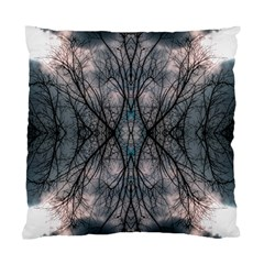 Storm Nature Clouds Landscape Tree Standard Cushion Case (one Side) by Nexatart