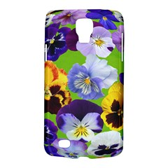 Spring Pansy Blossom Bloom Plant Galaxy S4 Active by Nexatart