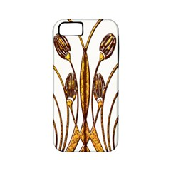Scroll Gold Floral Design Apple Iphone 5 Classic Hardshell Case (pc+silicone)