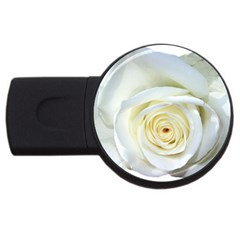 Flower White Rose Lying Usb Flash Drive Round (2 Gb) by Nexatart