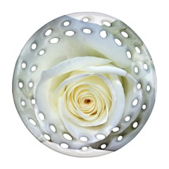 Flower White Rose Lying Ornament (round Filigree) by Nexatart