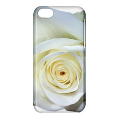 Flower White Rose Lying Apple Iphone 5c Hardshell Case by Nexatart