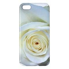 Flower White Rose Lying Iphone 5s/ Se Premium Hardshell Case by Nexatart