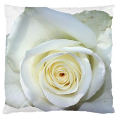 Flower White Rose Lying Standard Flano Cushion Case (two Sides) by Nexatart