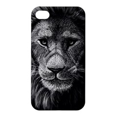 My Lion Sketch Apple Iphone 4/4s Premium Hardshell Case by 1871930